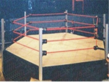 Wrestling Ring 6 Sided